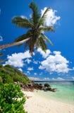海滩震惊的塞舌尔群岛 图库摄影
