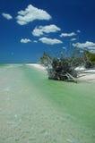海滩风景的佛罗里达 库存图片