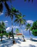 海滩风景 库存图片