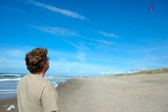 海滩飞行风筝 免版税图库摄影