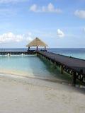海滩马尔代夫 免版税库存图片