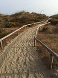 海滩马尔韦利亚西班牙 库存图片