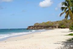海滩马提尼克岛trabaud 免版税库存照片