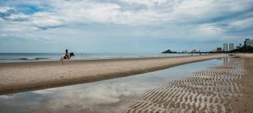 海滩骑乘马的少妇 库存照片
