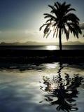 海滩黄昏晚上掌上型计算机日落结构树 免版税图库摄影