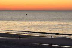 海滩黎明加州桂 库存图片