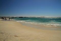 海滩,开普敦 库存照片