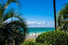 海滩 清楚的蓝色海的看法 库存照片