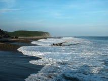 海滩#1 免版税库存图片
