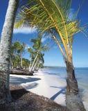 海滩 免版税库存图片