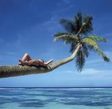 海滩 免版税库存照片