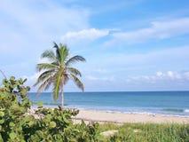 海滩boca ciega视图 图库摄影