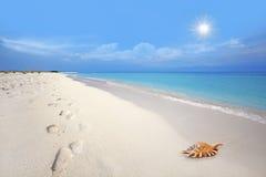 海滩boca grandi 免版税库存照片