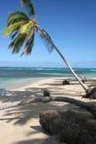 海滩bonita多米尼加共和国 免版税库存照片