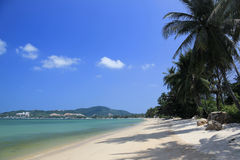 海滩bophut酸值samui泰国 免版税库存照片