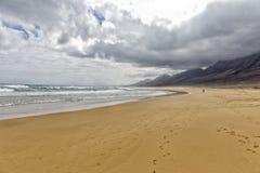 海滩canarian cofete费埃特文图拉岛海岛海岛冲浪板 免版税图库摄影