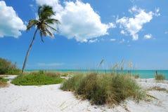 海滩captiva海岛 库存照片