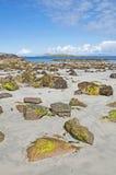 海滩connemara高尔韦爱尔兰 免版税库存图片