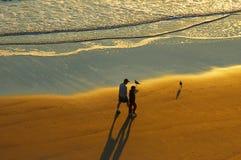 海滩daytona佛罗里达日出 免版税库存图片