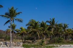 海滩Destiladeras 图库摄影