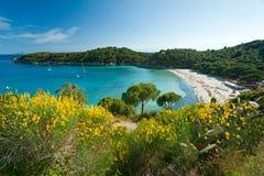海滩elba fetovaia海岛意大利 图库摄影