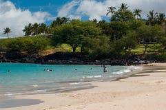 海滩hapuna公园状态 免版税图库摄影