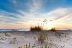 海滩kalogria日落 免版税库存图片