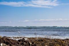 海滩La Lancha 库存图片