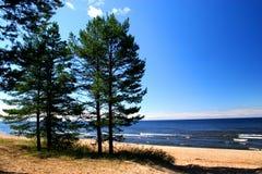 海滩ladoga湖 图库摄影