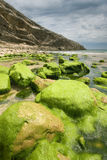 海滩Llanes,阿斯图里亚斯 免版税库存图片