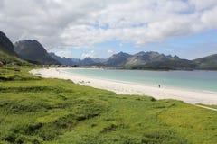 海滩lofoten白色 免版税库存照片