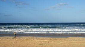海滩maroubra 图库摄影