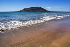 海滩mazatlan墨西哥 库存照片