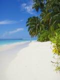 海滩mentawai 免版税库存图片