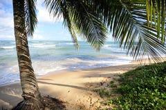 海滩padadise 库存照片
