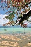 海滩patong 免版税库存图片
