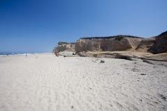 海滩pomponio状态 图库摄影