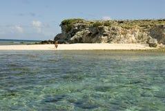 海滩snorkeler 免版税库存照片