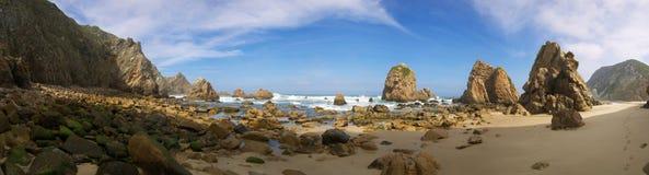 海滩ursa 免版税库存图片