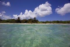 海滩viequez 免版税库存图片