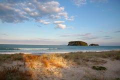 海滩whangamata 免版税图库摄影