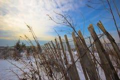 海滩winterscape 免版税图库摄影