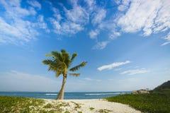 海滩wuzhizhou海岛在萨尼亚海南 库存图片
