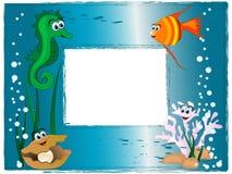 海照片框架 库存照片