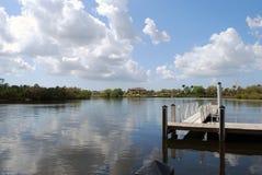 海牛河在佛罗里达 免版税库存图片