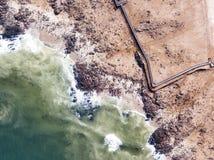 海狮殖民地在2018年1月采取的纳米比亚 库存图片