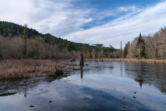 海狸池塘,失去的河路,伍德斯托克NH 03262 库存图片