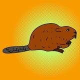 海狸流行艺术传染媒介例证 免版税库存照片