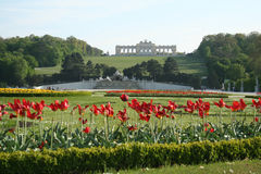 海王星喷泉和Gloriette在Schönbrunn公园 图库摄影