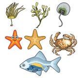 海生物的传染媒介例证4 向量例证